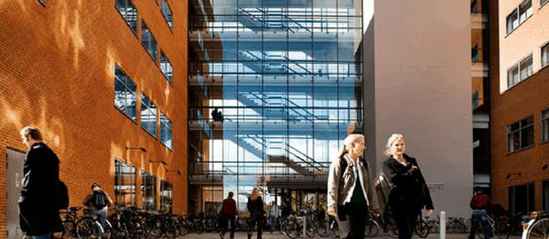 Universidade dinamarquesa oferece bolsa para mestrado em inovação